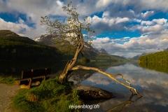 Reisenblog-2453