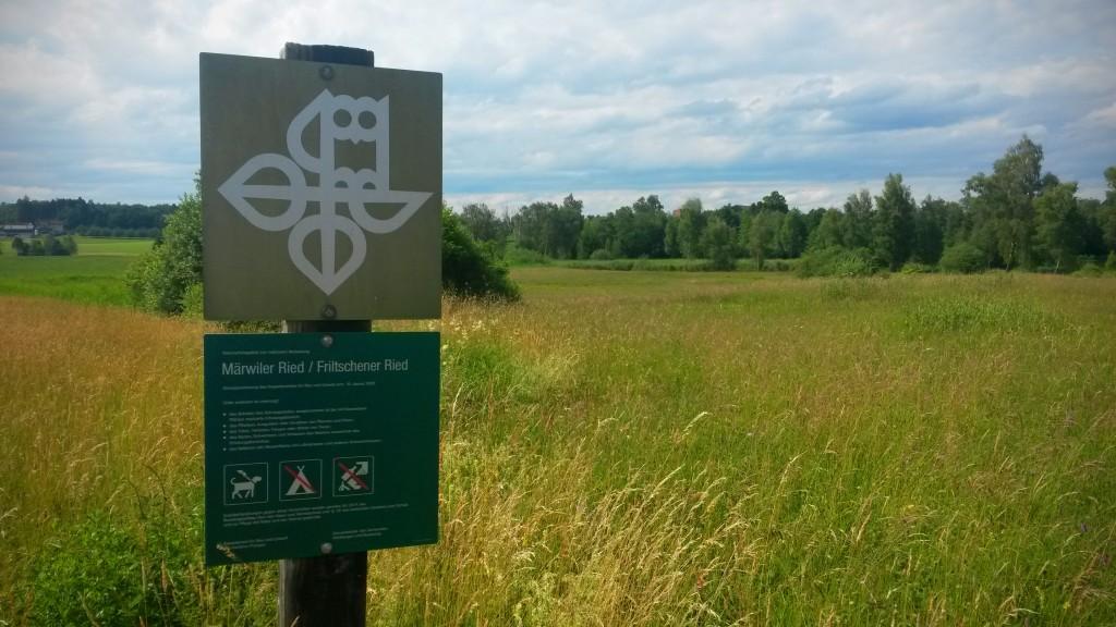 """Ried zwischen Friltschen, Märwil und Buch b.M. im Thurgau (Naturschutzgebiet) - Rechts im Hintergrund befindet sich der """"grosse"""" Weiher"""
