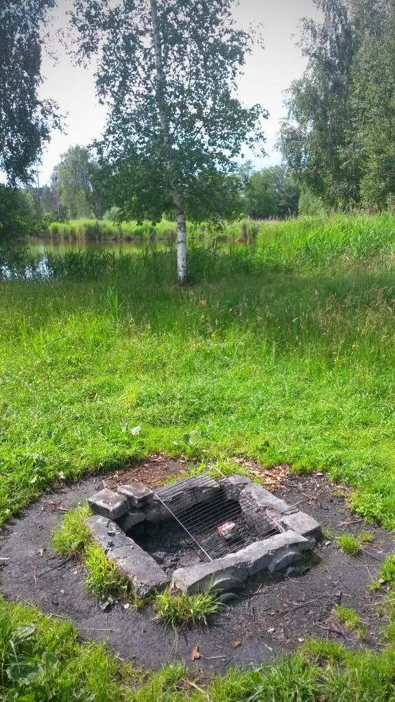 Ried zwischen Friltschen, Märwil und Buch b.M. im Thurgau (Naturschutzgebiet) - Grillplatz am Ufer