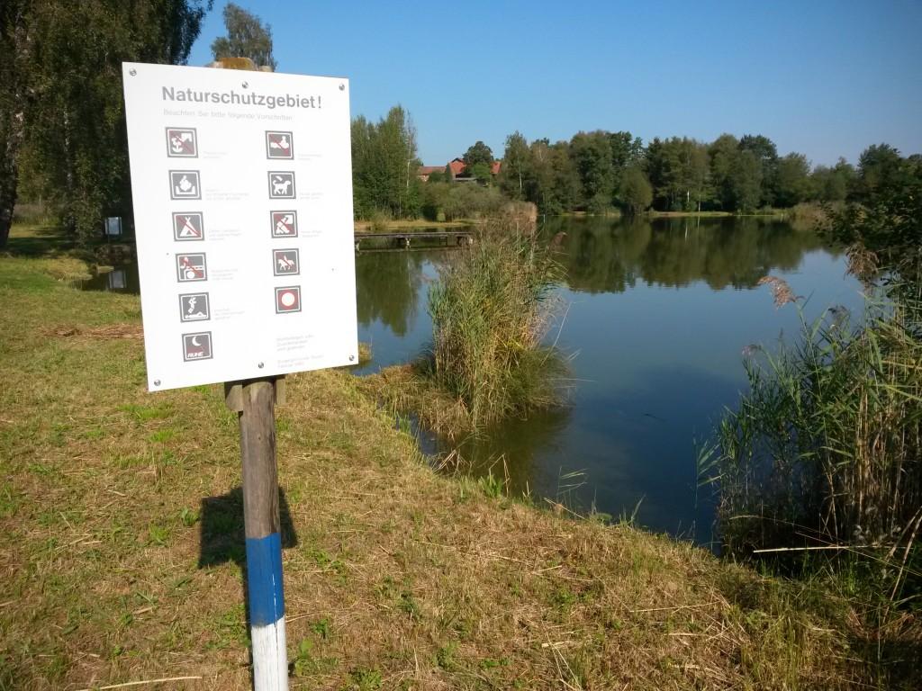 Informationstafel - Ried zwischen Friltschen, Märwil und Buch b.M. im Thurgau (Naturschutzgebiet)