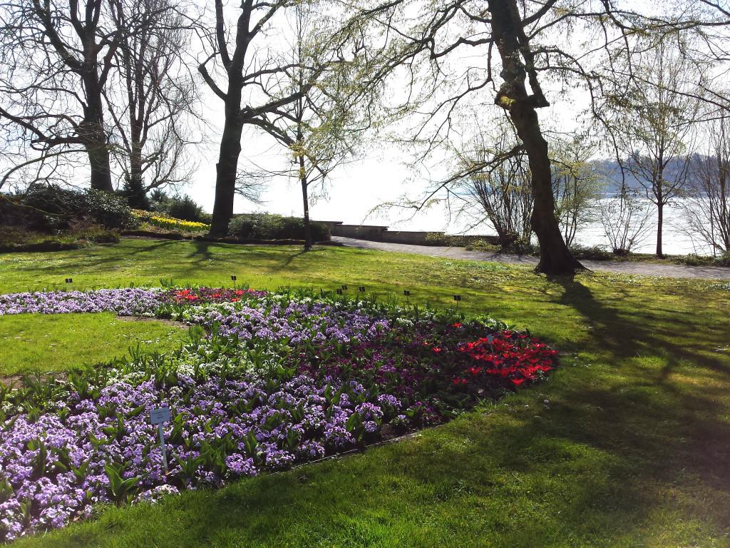 Blumeninsel Mainau, Konstanz am Bodensee