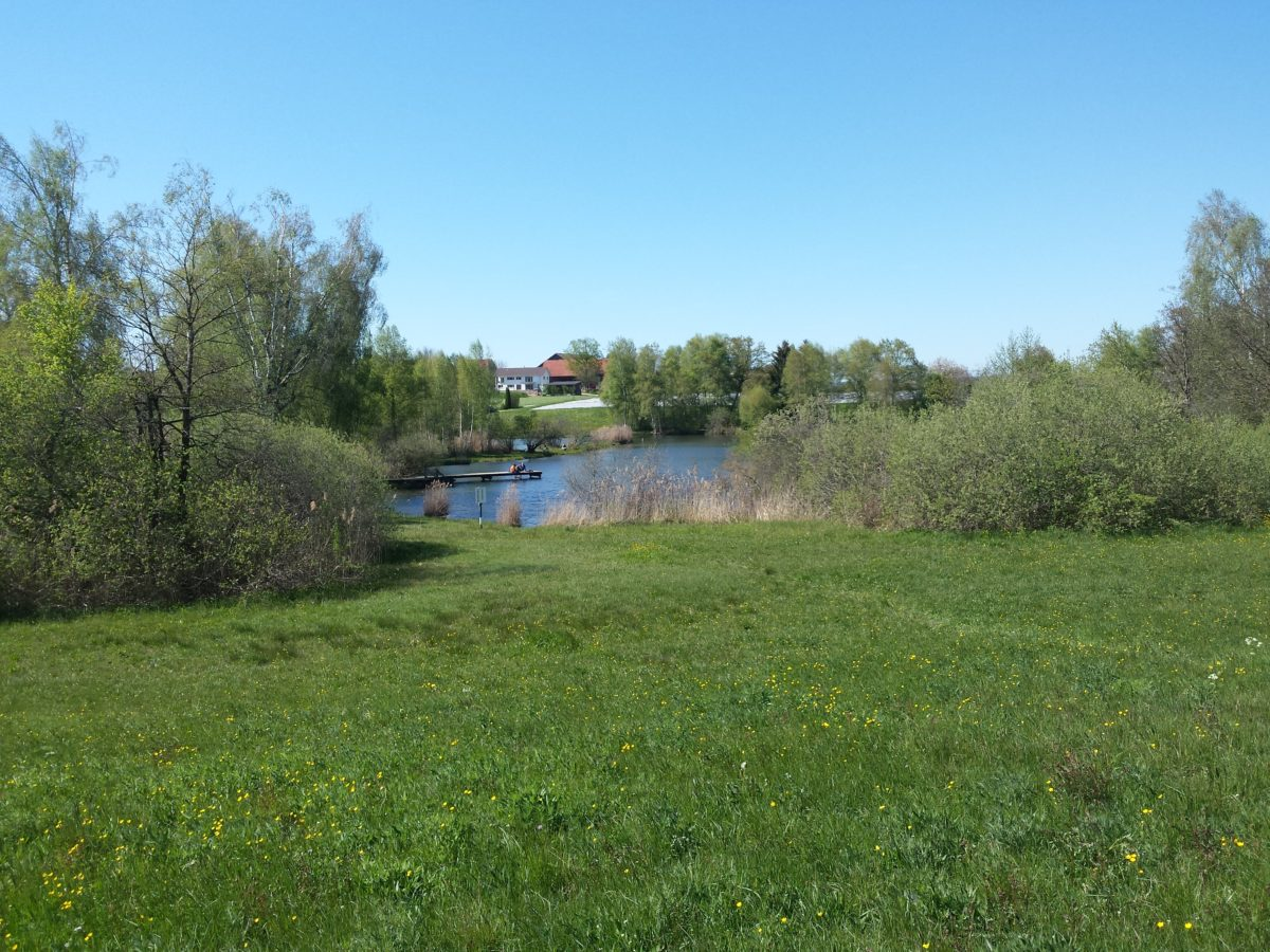 Photo-Set: Mai am Märwiler Riet – 14 lizenzfreie Naturphotos (Märwiler Riet, Thurgau)