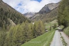 Val_Sinestra-3241