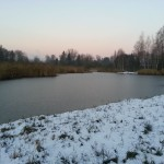 Das Märwiler Riet im November 2013 (Naturschutzgebiet)