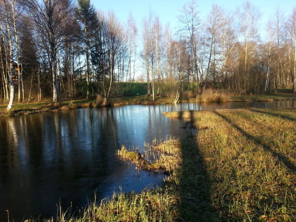 Sehr schöne und saubere Natur in Märwil