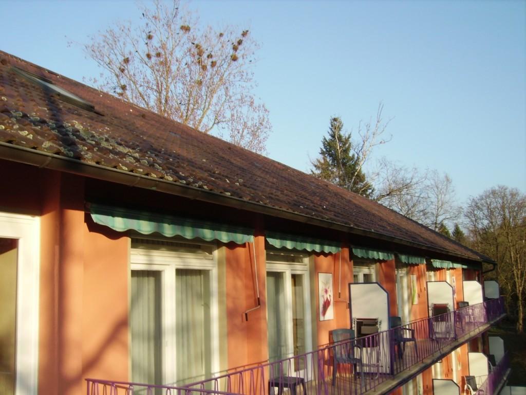 Eden Hotel am Park - Blick über das Dach