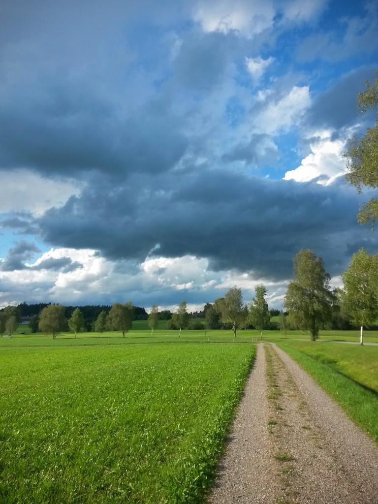 Umgebung Ried zwischen Friltschen, Märwil und Buch b.M. im Thurgau (Naturschutzgebiet)