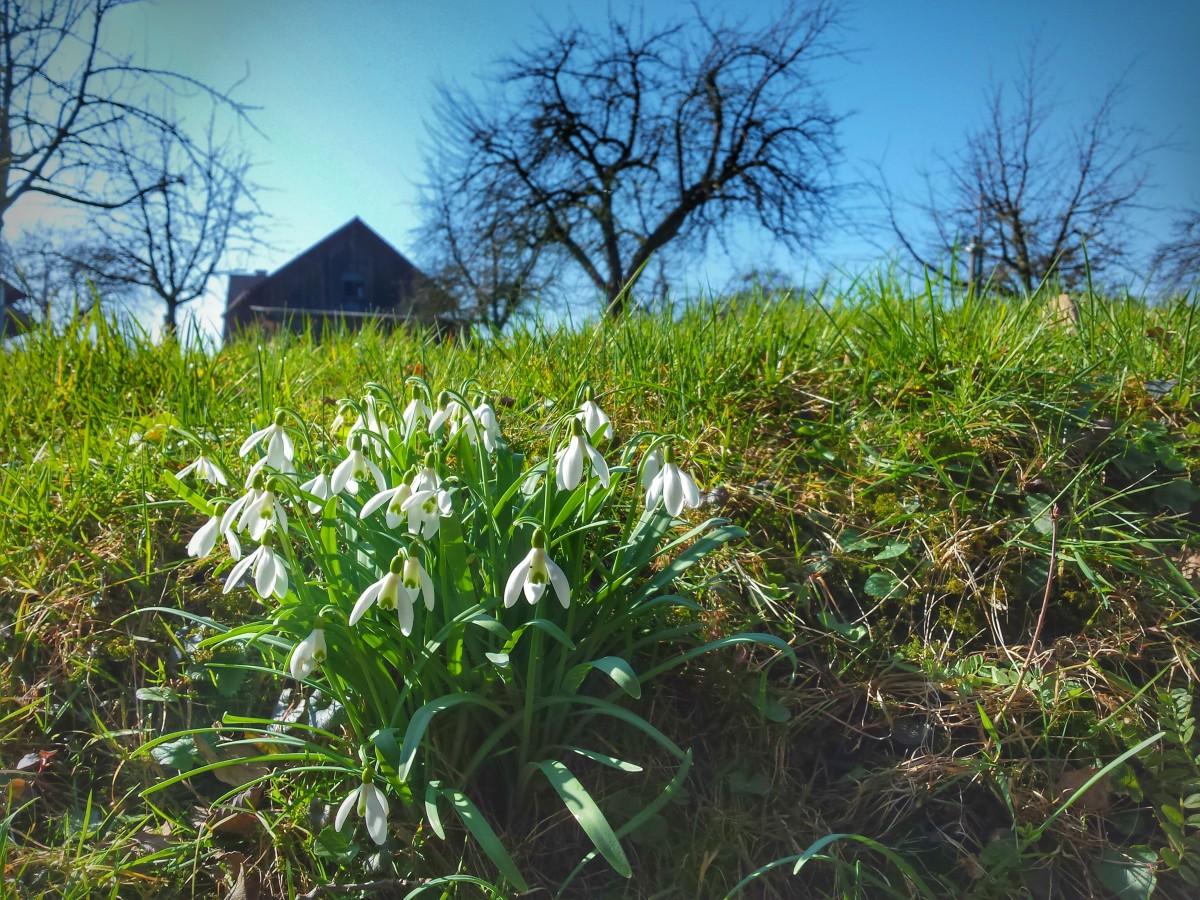 Frühling – wieder mal Sonne auftanken