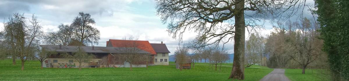 reisenblog.ch