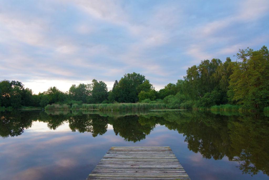 Märwiler Riet (Märwil, Thurgau): der Steg am Weiher, ein beliebtes Fotoobjekt im Naturschutzgebiet